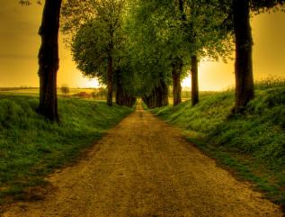 LearnWithOliver - German-English translation for Gott