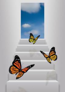 eingreifen der therapeutin psychotherapie